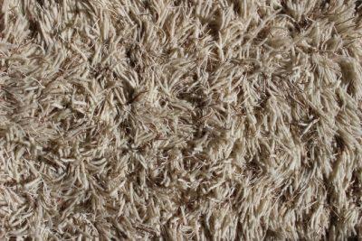 ラグは表面の繊維がホコリを吸着してくれる